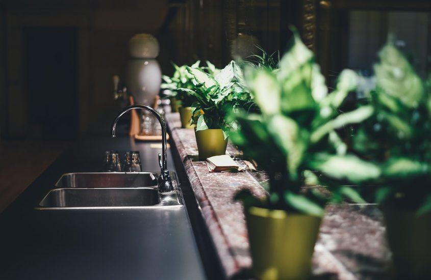Urban Jungle Inspiratie : Urban jungle woontrend interieur crush
