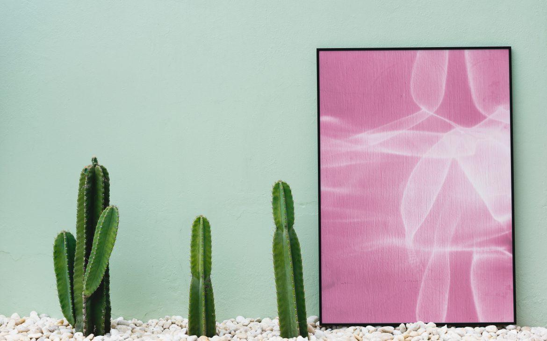 Een pastelkleurige muur met roze accessoires en groene cactussen. Interieur inspiratie met pastelkleuren